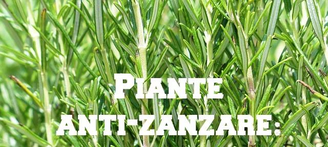 Disinfestazione dalle zanzare con le piante